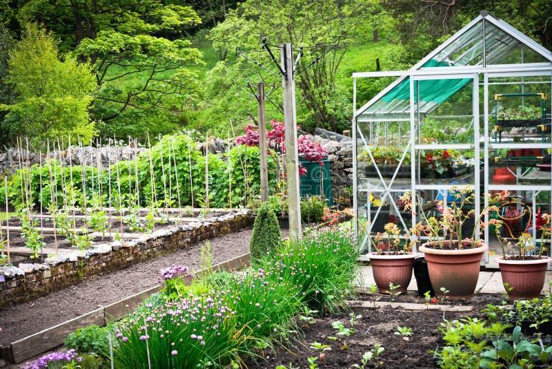 Grönsakträdgård arkivbilder