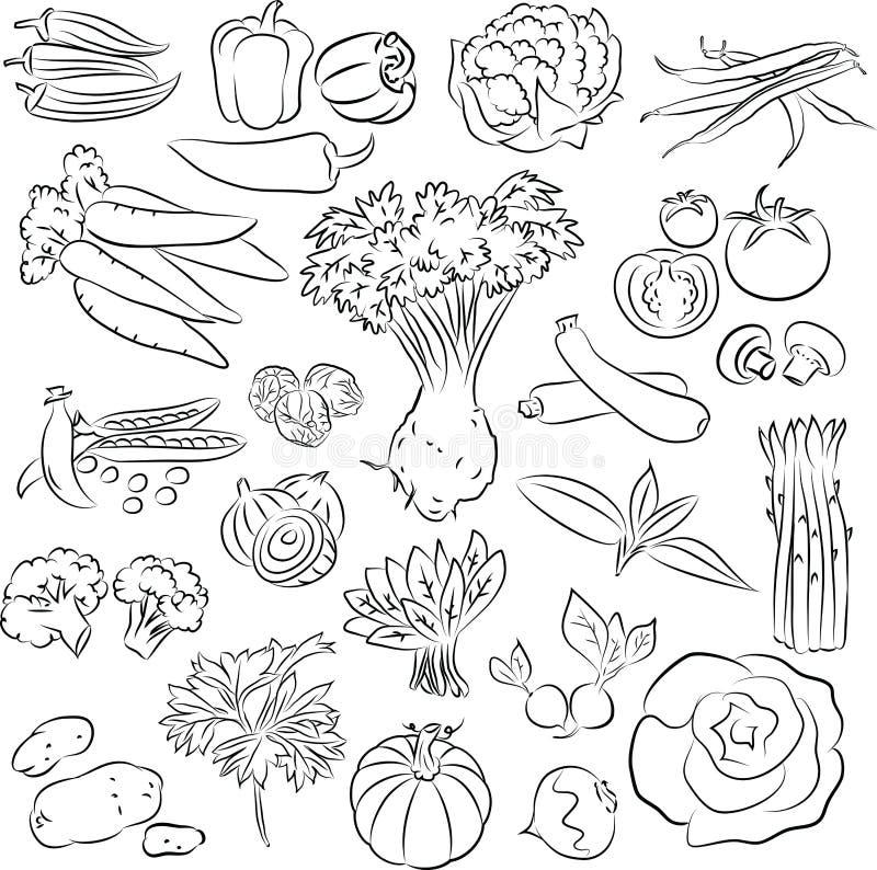 Grönsakuppsättning stock illustrationer