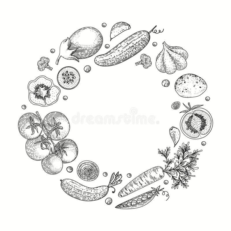 Grönsakvektorcirkel med gurkan, tomat, peppar, aubergine, potatis, ärtor, morot, broccoli Sund matdesign stock illustrationer