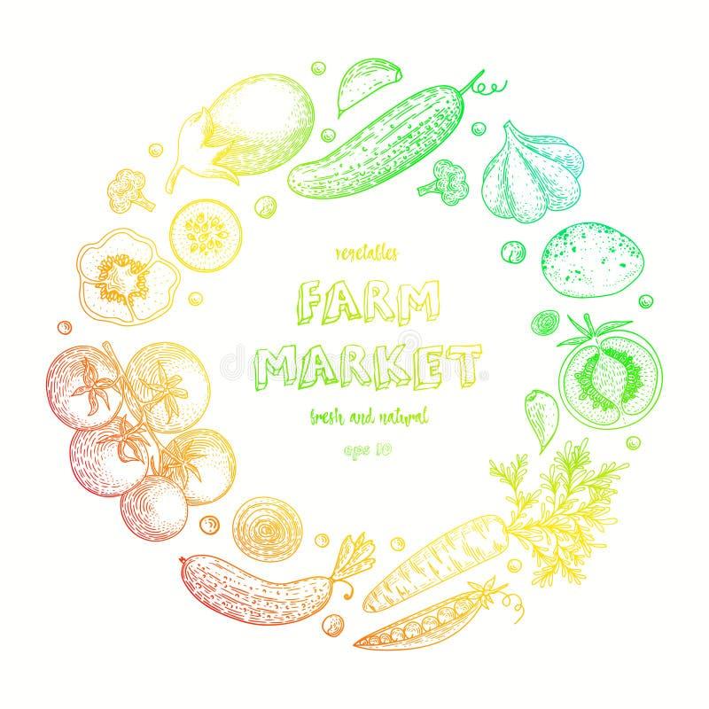 Grönsakvektorcirkel med gurkan, tomat, peppar, aubergine, potatis, ärtor, morot, broccoli Sund matdesign royaltyfri illustrationer