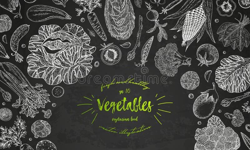 Grönsakvektorsammansättning med gurkan, tomat, aubergine, potatis, morot, broccoli Sund matdesignmall royaltyfri illustrationer