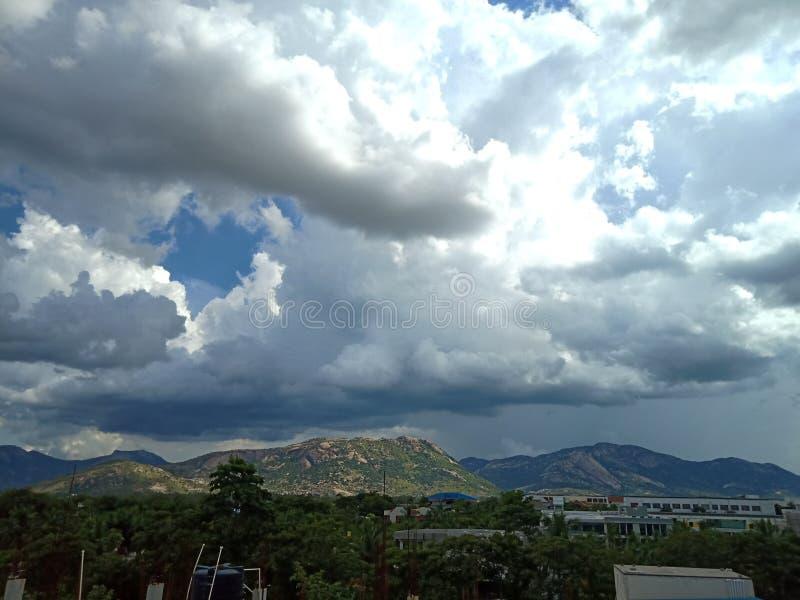 Grönska för moln n royaltyfri fotografi