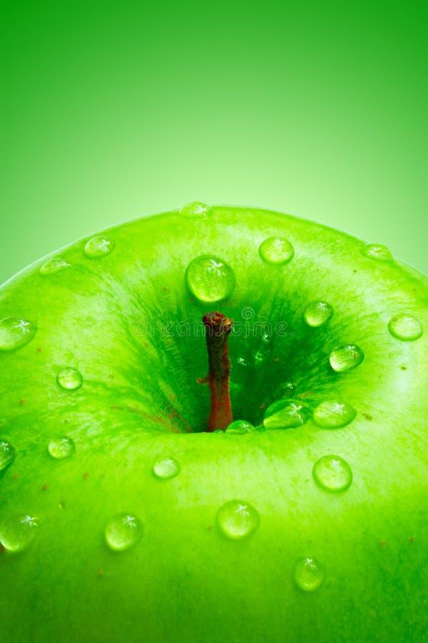 Grönt äpple royaltyfria bilder