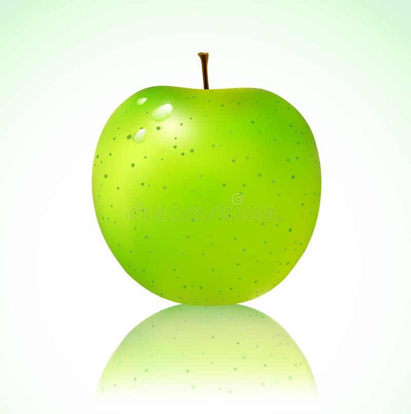 Grönt äpple stock illustrationer