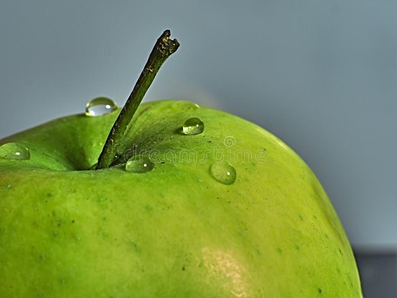 Grönt äpple på en makroskala royaltyfria bilder