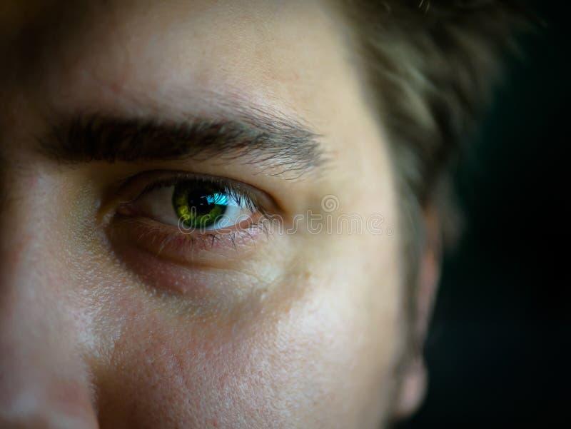 Grönt öga för makro royaltyfria foton