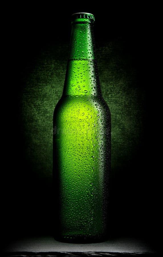 Grönt öl på svart arkivbilder