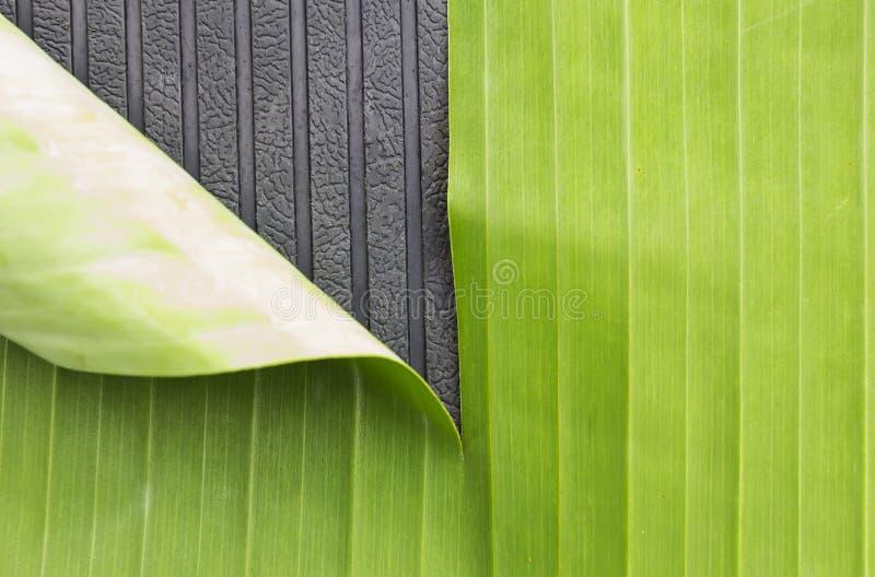 Grönt abstrakt begrepp för bakgrund för bananblad- och gummimarkering arkivbild