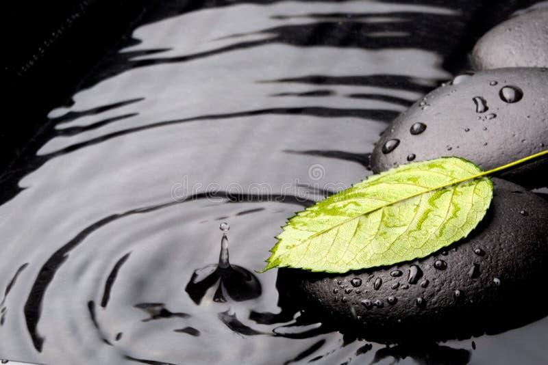 Grönt blad med zenstenar på våt bakgrund arkivbilder