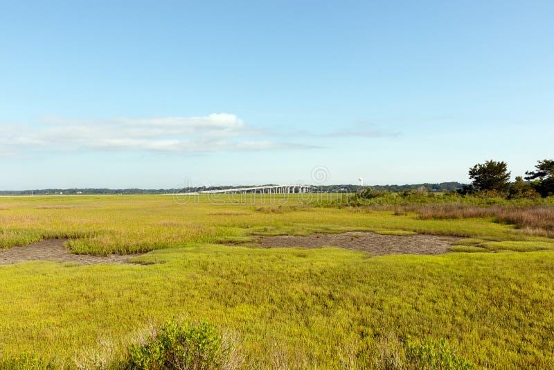 Grönt dyngräslandskap med lågvatten och bron arkivfoto