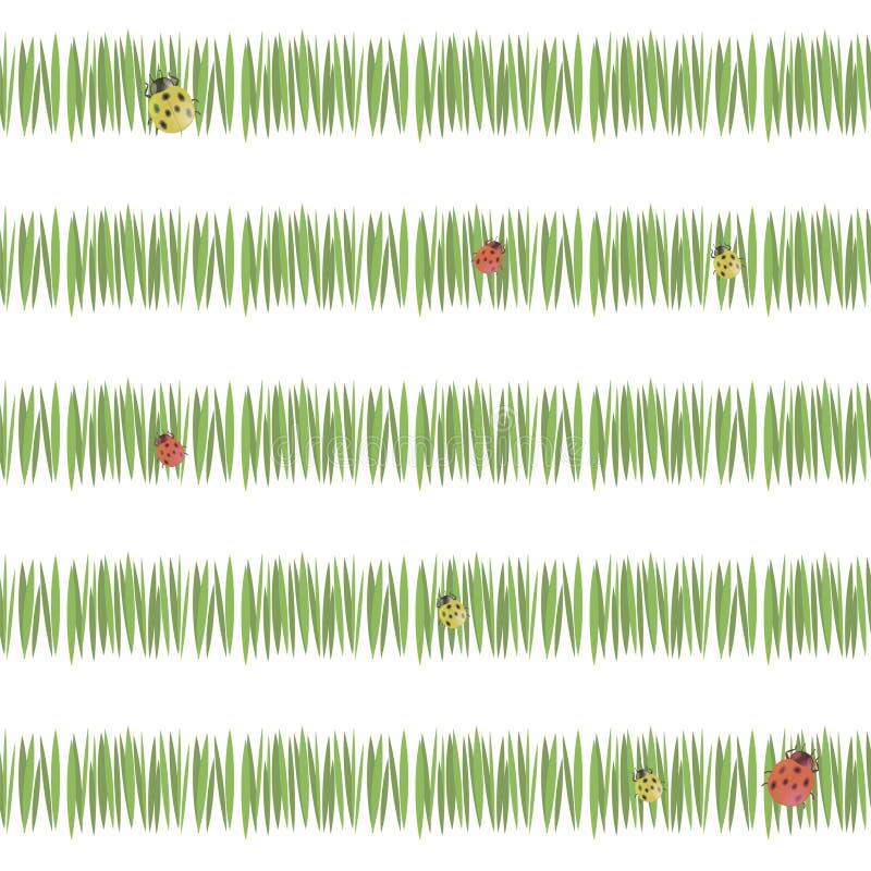 Grönt enkelt grönt gräs gör randig vegetation för vykortfriskhette med röda nyckelpigor och gult som isoleras på vit bakgrundssea royaltyfri illustrationer