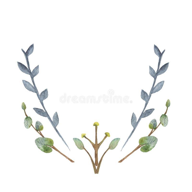 Grönt eukalyptuskort för akvarell på vit bakgrund arkivbild