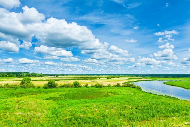 Grönt fält med floden och himmel fotografering för bildbyråer