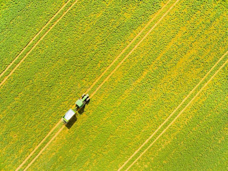 Grönt fält med traktoren arkivfoto