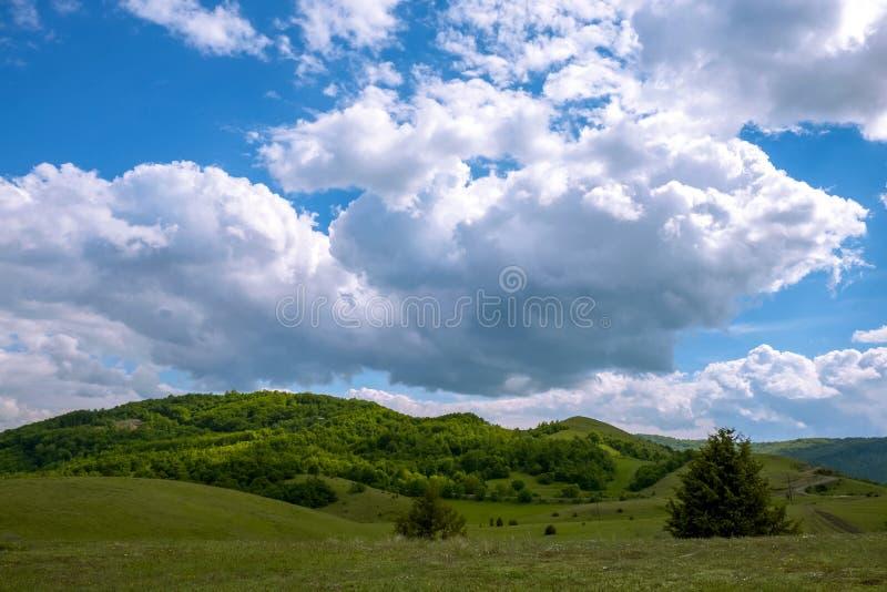 Grönt fält och feta moln arkivfoton