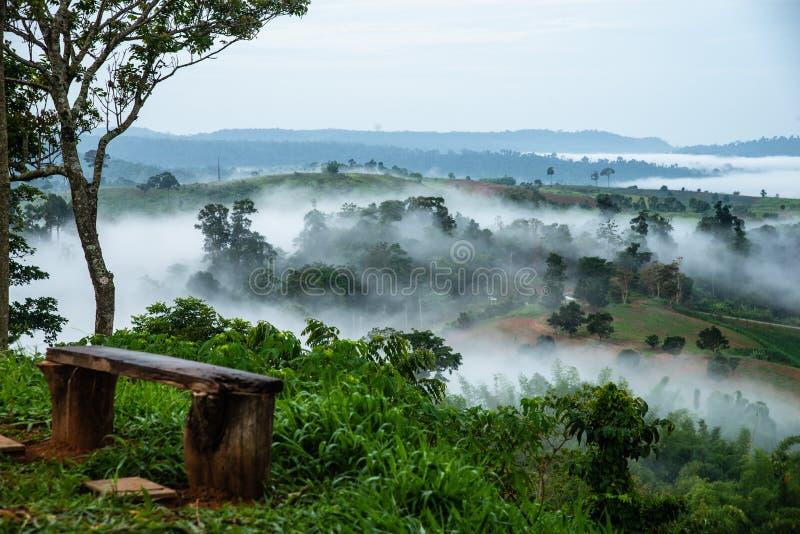 Grönt fält, träd med den blåa himlen, dimma och moln i morninen fotografering för bildbyråer