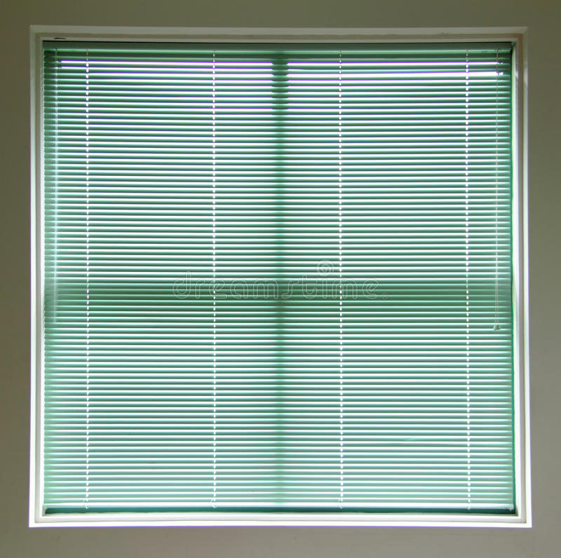 grönt fönster för rullgardiner royaltyfria bilder