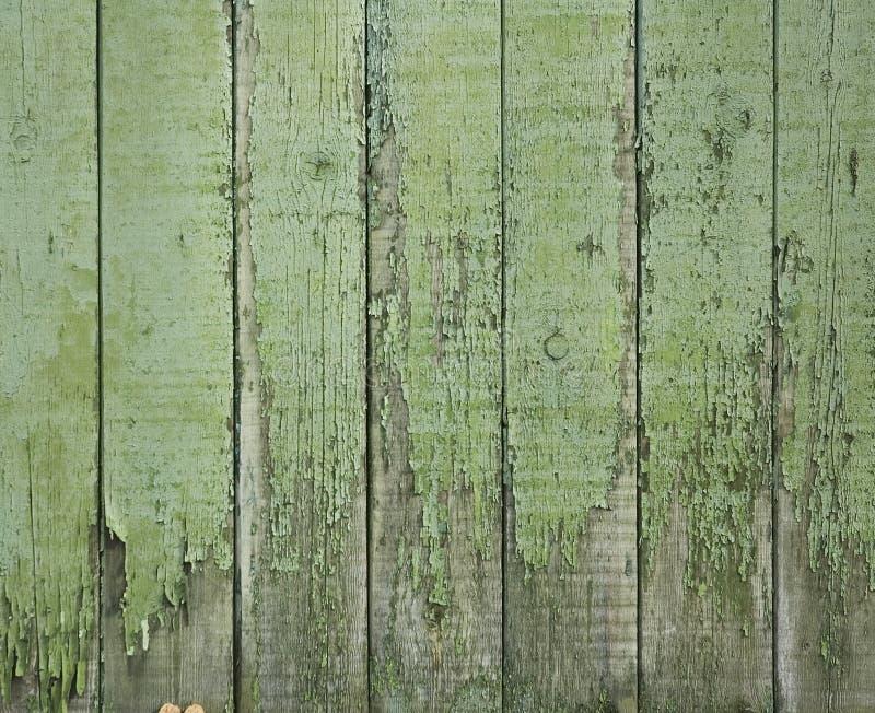 grönt gammalt trä för staket arkivbilder