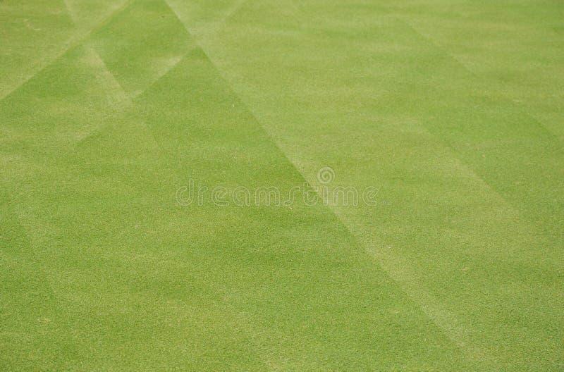 Grönt golfdomstolfält i solig dag arkivfoton