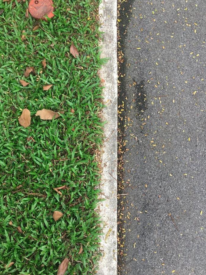 Grönt gräs för bästa sikt och asfaltväg som avskiljs av vita konkreta linjer arkivfoton