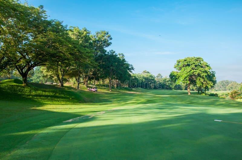 Grönt gräs för golfbana med Bluesky royaltyfria foton
