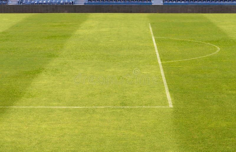 Grönt gräs från fotbollfält royaltyfri foto