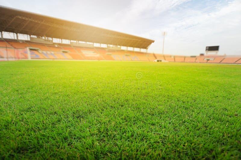 Grönt gräs i fotbollstadion Gräs på stadion i solljus royaltyfri bild