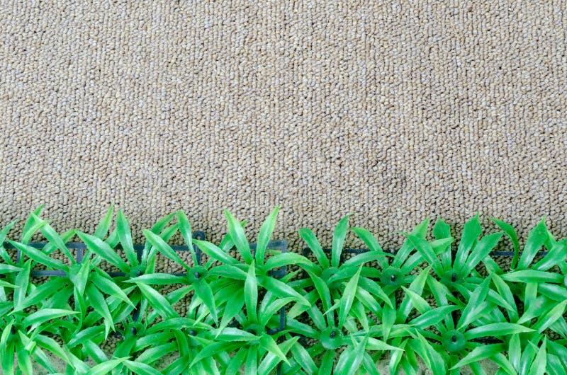 Grasswith mattar arkivbild
