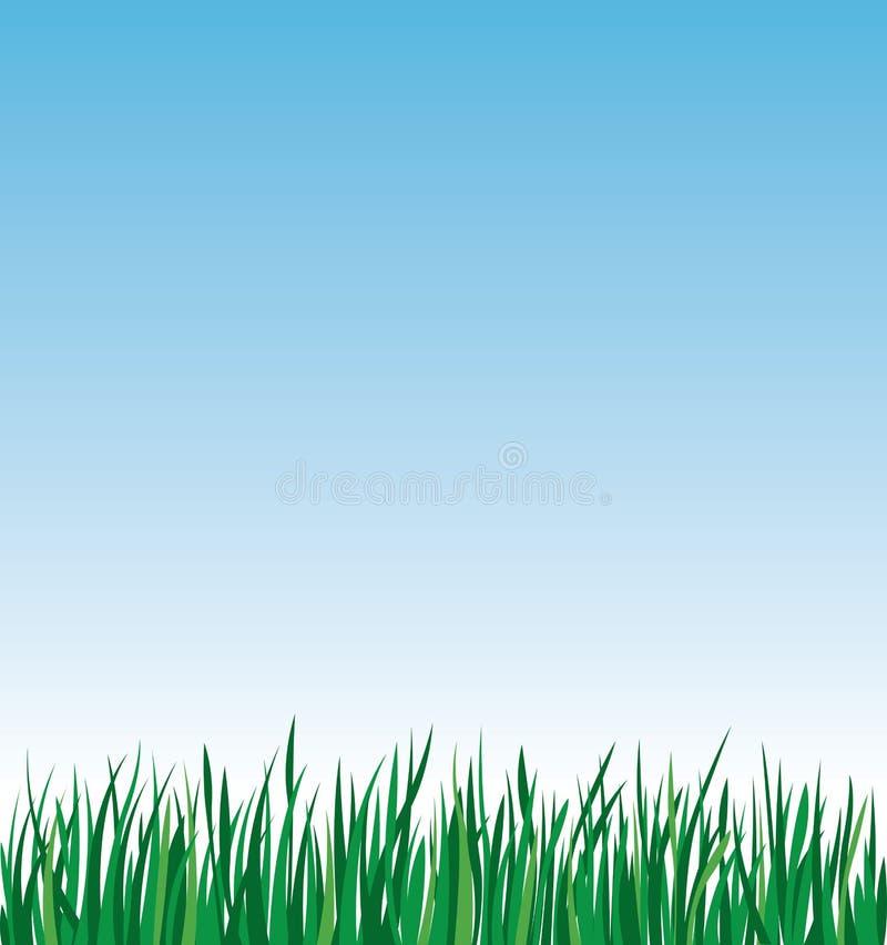 Grönt gräs på en bakgrund av vektorillustrationen för blå himmel fotografering för bildbyråer
