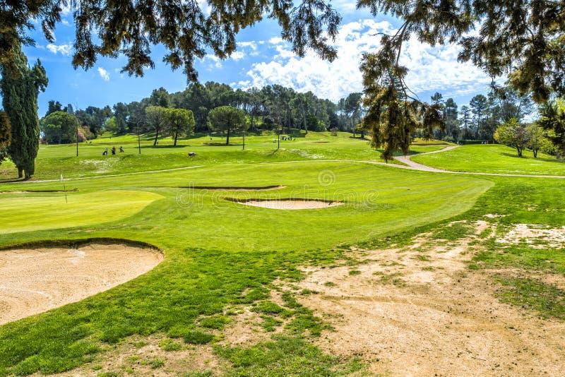 Grönt gräs på ett golffält på solig dag arkivfoto