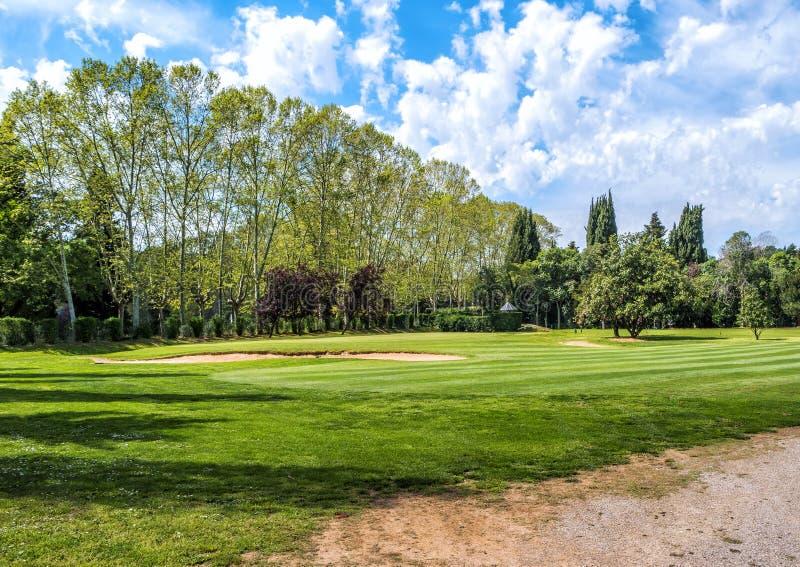 Grönt gräs på ett golffält på solig dag fotografering för bildbyråer