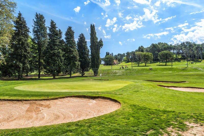 Grönt gräs på ett golffält på solig dag royaltyfria bilder