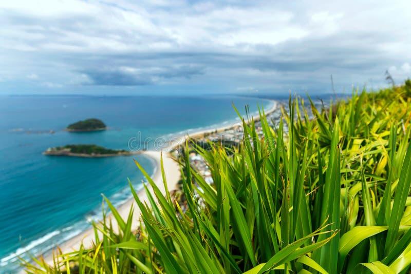 Grönt gräs på kullen med en härlig sandig strand i bakgrunden fotografering för bildbyråer