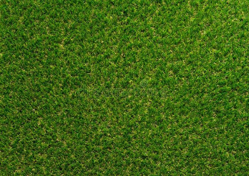 Grönt gräs texturerade bakgrund för golfsport och fotbollsport royaltyfria foton
