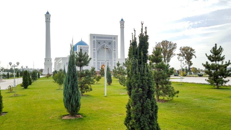 grönt granträd i bakgrundsmoskéminderåriget i Uzbekistan Tasjkent i molnigt väder royaltyfri foto