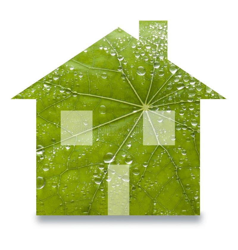 Grönt hållbart hem- blad royaltyfria bilder