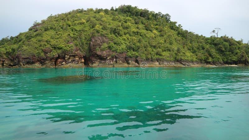 grönt hav arkivfoto