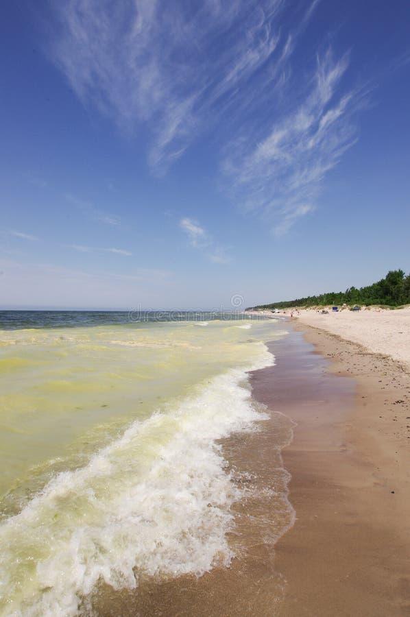Grönt hav för miljö- problem royaltyfria foton