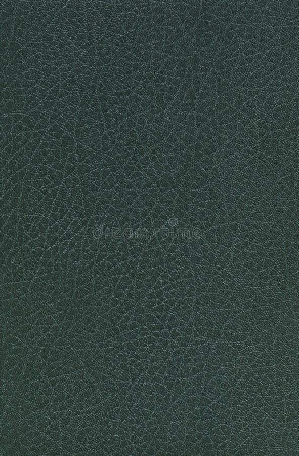 grönt läder royaltyfria foton