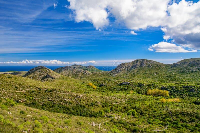 Grönt landskap av en Mallorca royaltyfria bilder
