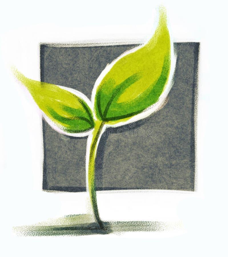 grönt little växt vektor illustrationer