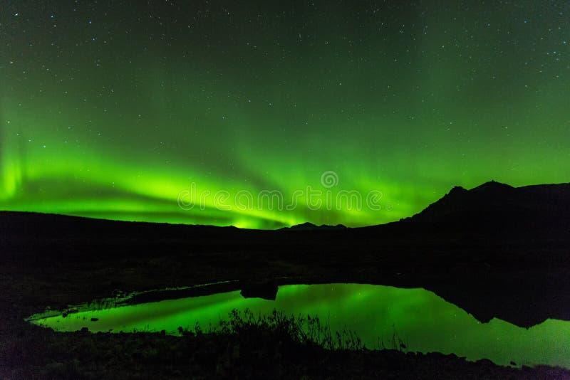 Grönt morgonrodnadljus bak sjöberget i sydliga Island Europa på nationalparkskaftafell arkivfoto