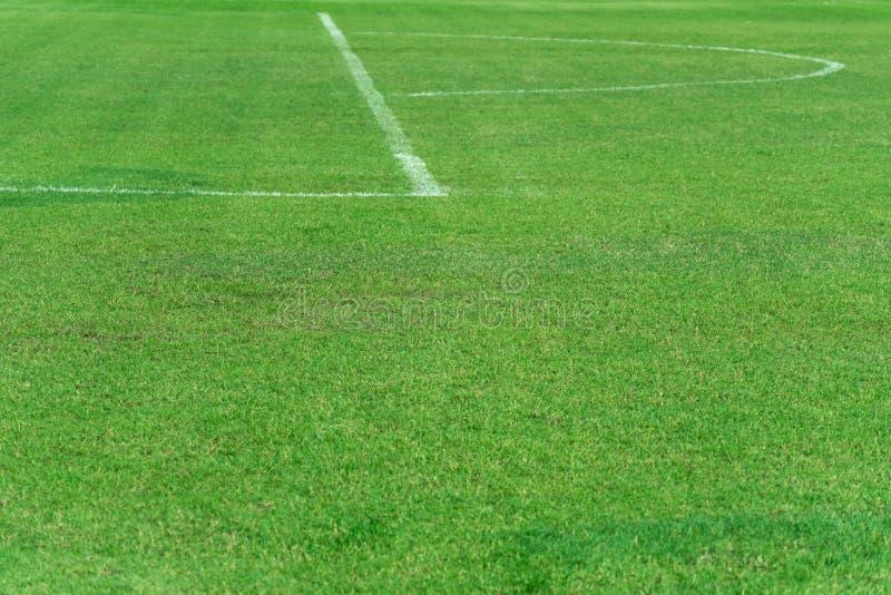 Grönt naturligt gräsfotboll- eller fotbollfält med den vita kurvan och den raka linjen sportbakgrund arkivfoton