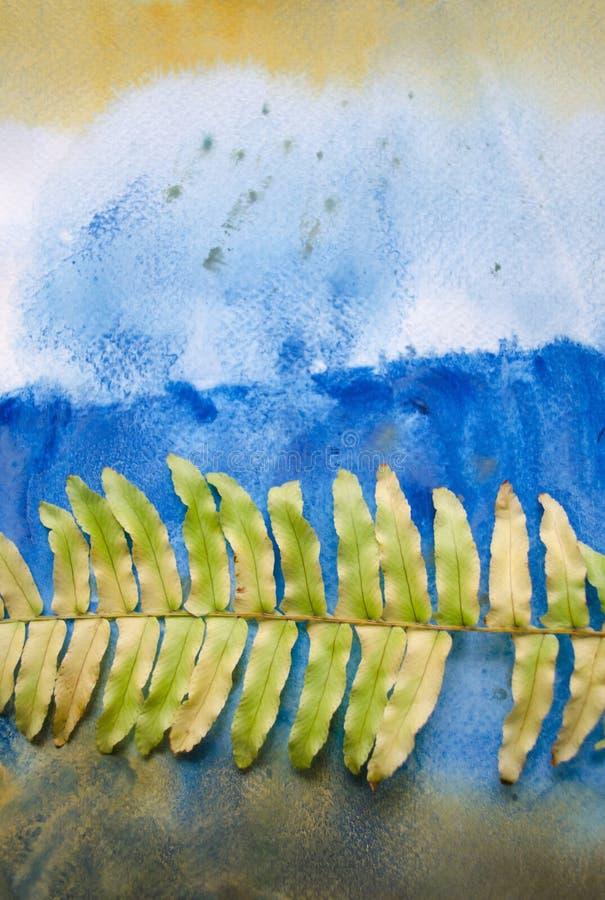 Grönt ormbunkeblad som isoleras på vattenfärgbakgrund Mellanrum för att motivera citationstecken, anmärkningen, meddelandet och k royaltyfri fotografi