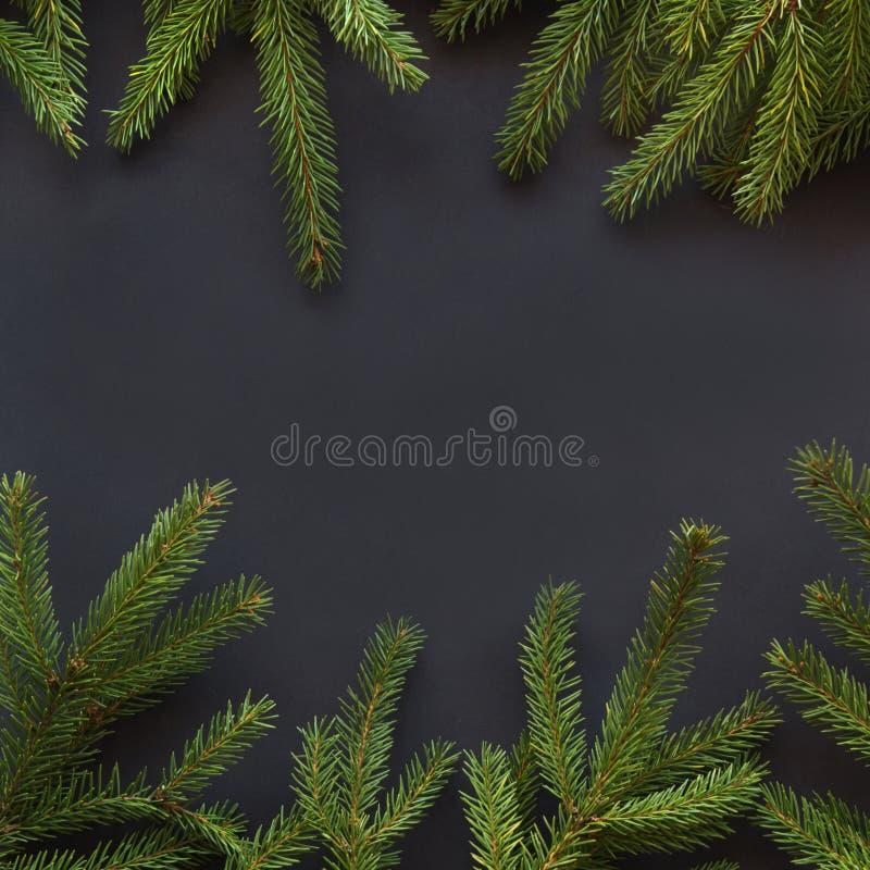 Grönt rött kort för vektor för design Granträdfilialer på svart bakgrund med kopieringsutrymme Top beskådar modell royaltyfria foton