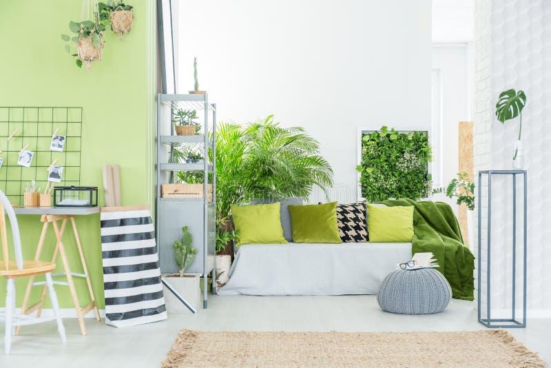 Grönt rum med gröna kuddar fotografering för bildbyråer