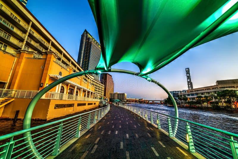 Grönt skydd vid Tampa Riverwalk på solnedgången arkivbild