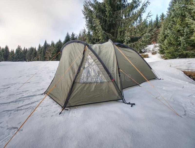 Grönt tält och på yttersida av den djupfrysta sjön royaltyfri bild