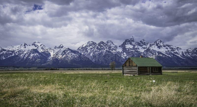 Grönt takhus i fältet arkivfoton