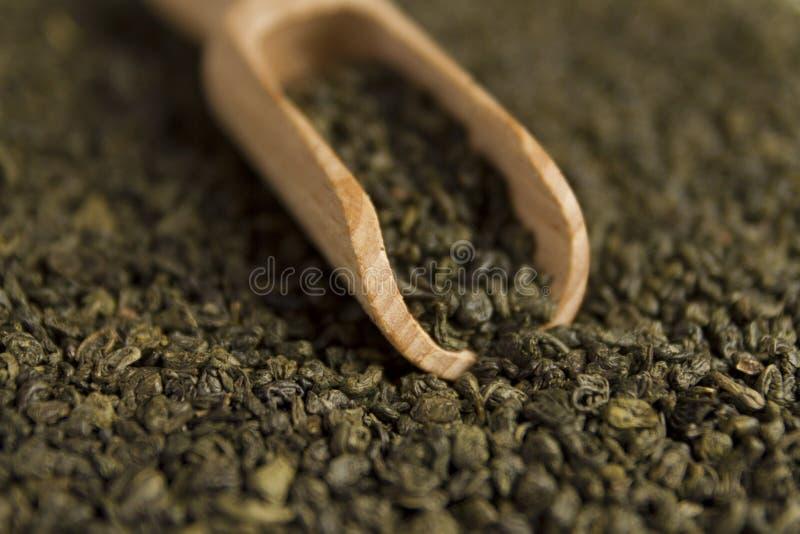 Grönt te för krut i skopa arkivfoto